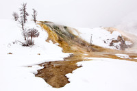 Mammoth Hot Springs (3)