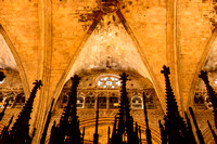 barcelona cathedral (1)