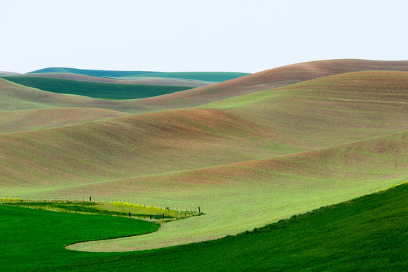 Palouse Agriculture (1)